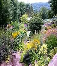 The Nurtons is a 2.5-acre plants man's garden that continues to develop