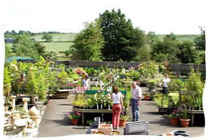 Welcome to one of Hereford's finest garden centres, Radway Bridge Garden Centre and Nurseries