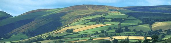 In the east of the Park are the Black Mountains