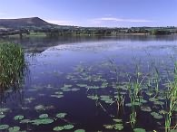 Llangorse Lake is only a few miles to the east of our Beacons